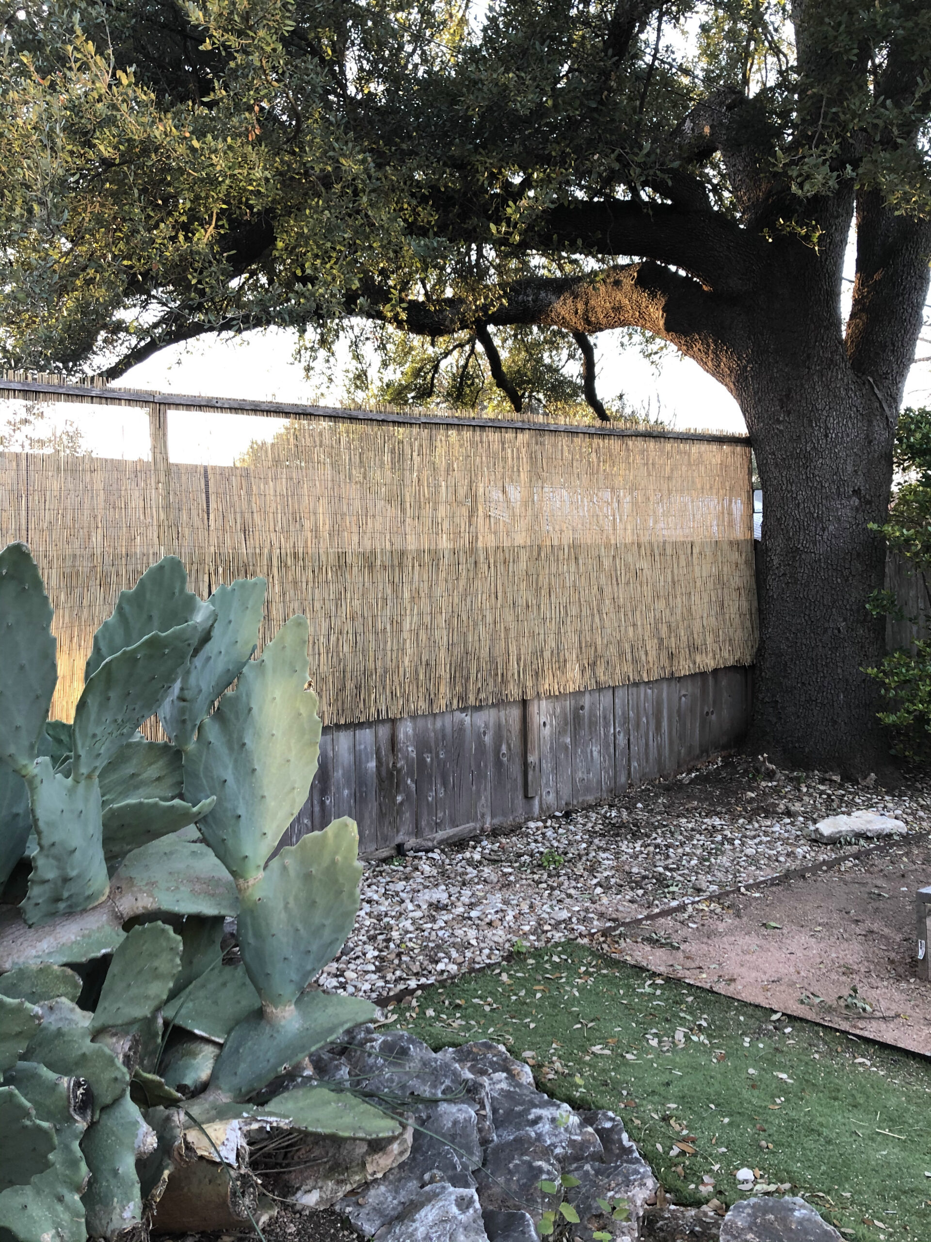 Fence fix and Privacy Addition